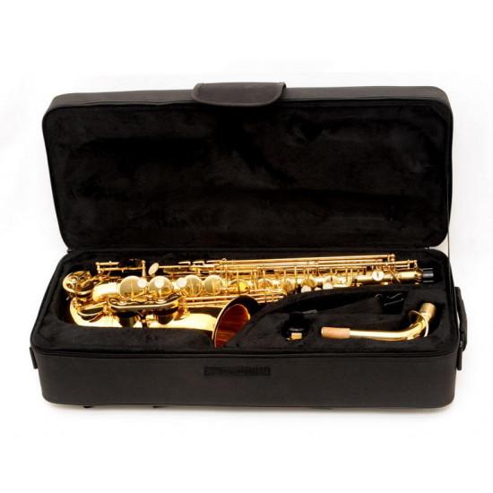 Alto saxophone Victory VAS Student 02 B-STOCK