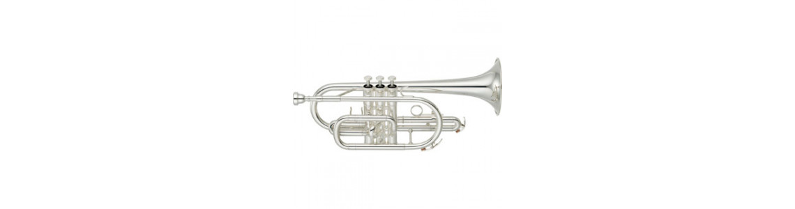 Cornets and other Trumpets